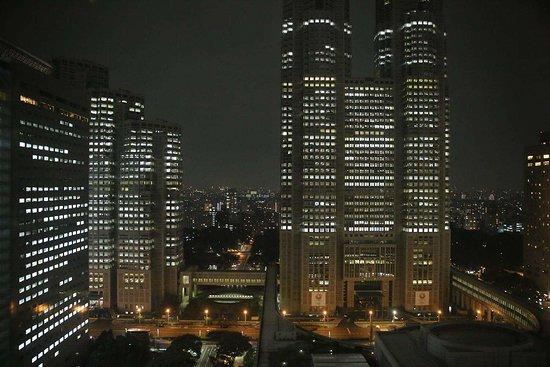 东京京王广场酒店照片