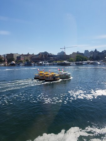 Day Trip from Seattle to Victoria on the Victoria Clipper: Water taxi ballet in Victoria Harbor