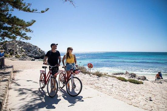 罗特内斯特岛与珀斯或弗里曼特尔的自行车租赁