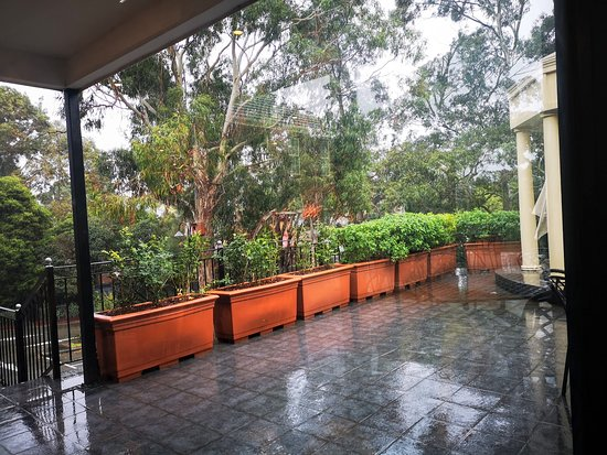 Forest Hill, Austrália: Outdoors.