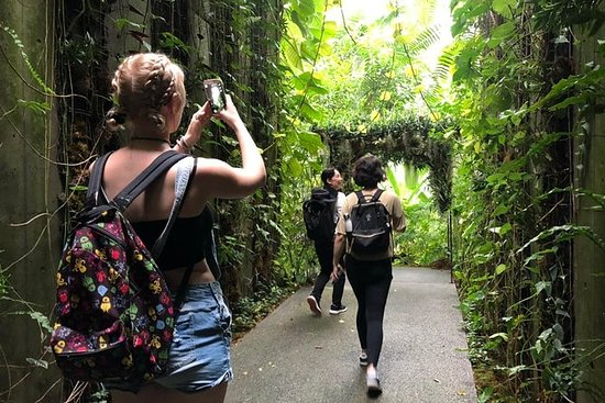 Kochi Highlights Private Day Tour med...