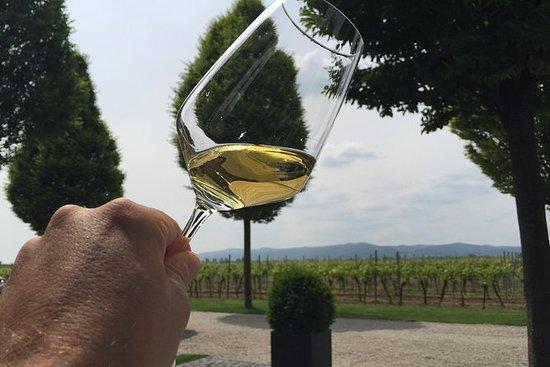 "Grape Escape Pfalz ""The Tuscany of..."