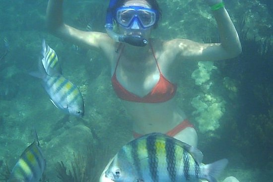 Experiencia de snorkel en Taganga