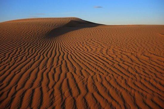Tour de 6 días en el desierto de Gobi...