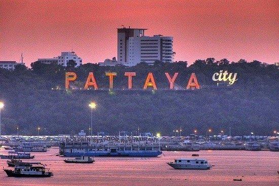 ヒンズー教のSelfie City&Pattayaでの寺院見学(インド、ベジ…