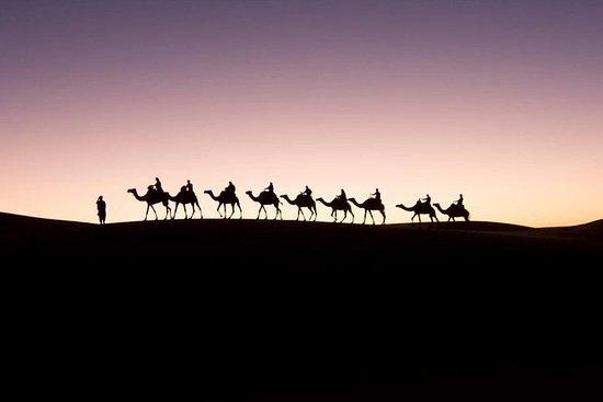 マラケシュからの豪華なキャンプでのプライベートメルズーガ砂漠ツアー