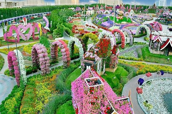 Miracle Garden Tour og Global Village...