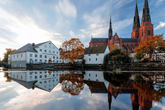 Private Tour by VIP car Uppsala and...