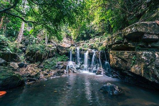 Phong Nha Botanic Garden Walking Tour...