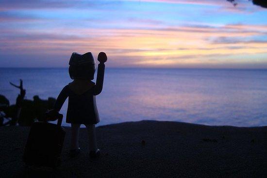 Negril Beach Flex et Sunset au Rick's...