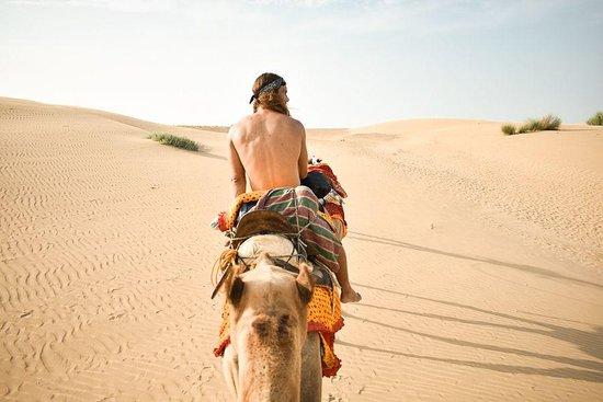 Jaisalmer Taxi Tours