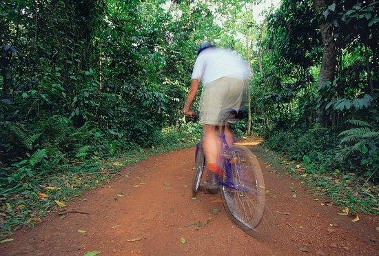 Mabira, ยูกันดา: Biking