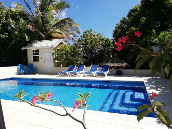 Gibbes, Barbados: Pool and deck at Gibbs Glade Cottage & Garden Studios here in sunny Barbados...