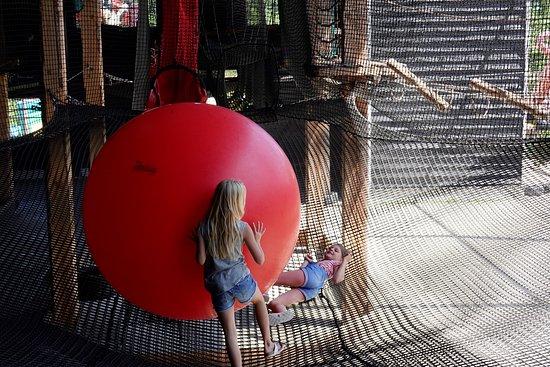 Klok'uus: spelen op een soort spring-matras met een grote bal