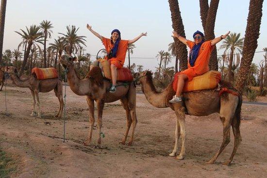 5 jours en voyage privé de Marrakech à Fès Via Desert : Camel ride in Palmeraie