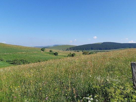 Reserve Naturelle des Sagnes de la Godivelle