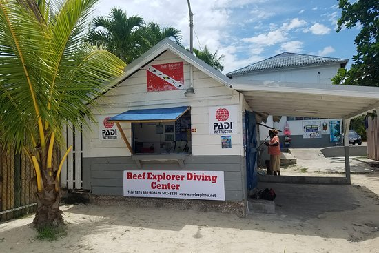 ‪Reef Explorer Diving Center‬