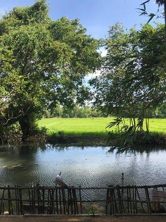 El mejor de Sri Lanka