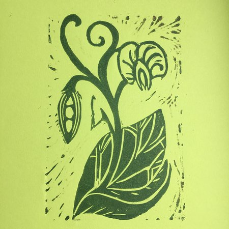 Peas on Earth: print from my second Lino cutting workshop with Adie Blundell at the Herbert Art Gallery & Museum, Coventry in November 2018. Lawrence printers ink on paper.