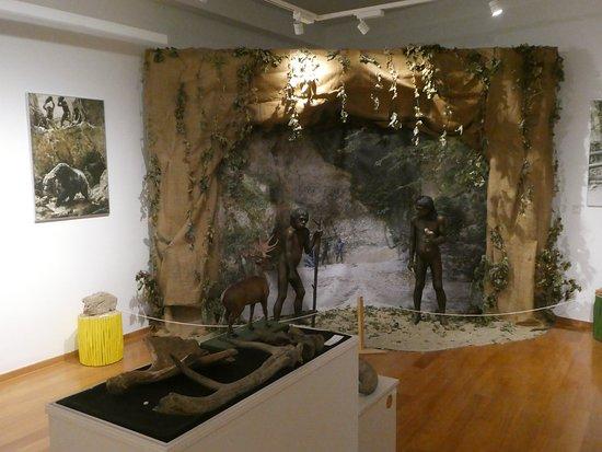 Natural history museum: Neanderthal display