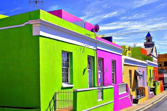 Cape Tourism Solutions
