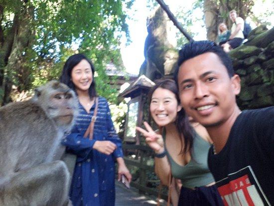 I Drive Bali Tours