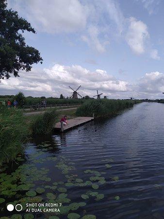 Kinderdijk: Molinos de fondo