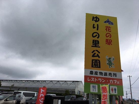 Sakai city Farmer's Market Yuriichi