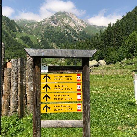 Dintorni chalet Rosa dei Monti Valle Soana Piemonte Alpi trekking escursionismo natura gta