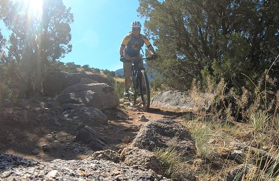 Mountain biking in Placitas New Mexico
