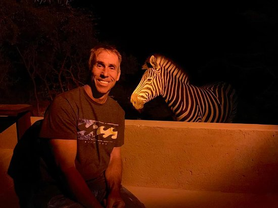 Our nightly visit from one of the zebras.