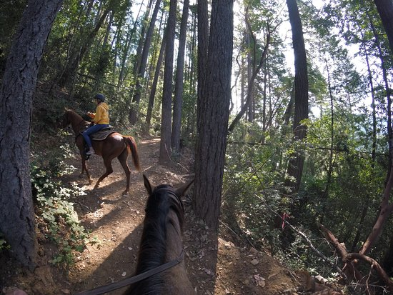 Somes Bar, CA: Trail riding at Marble Mountain Ranch (GoPro picture - July 2019)