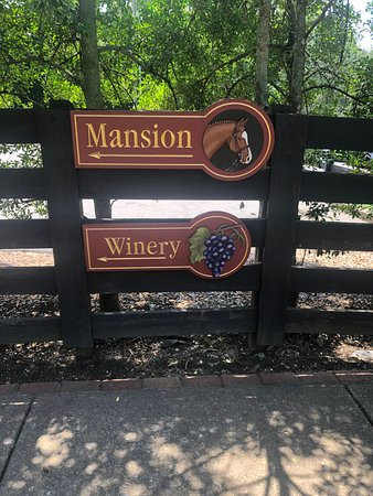 Belle Meade Guided Mansion Tour with Complimentary Wine Tasting: Belle Meade