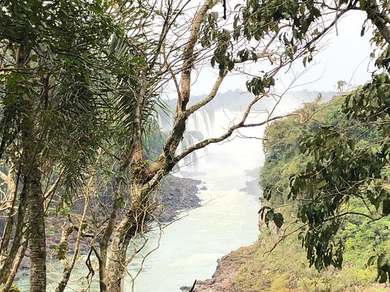 Iguazu National Park Photo