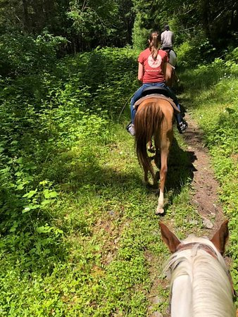E Z Times Guided Trail Rides (Elbe) - 2019 All You Need to