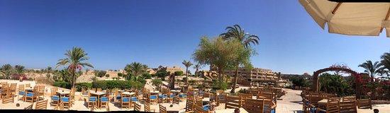 Dalla Sardegna all'Egitto