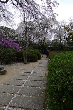 Nakain Temple garden