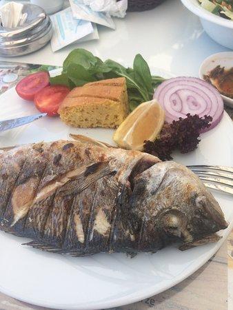 Balıklar güzel