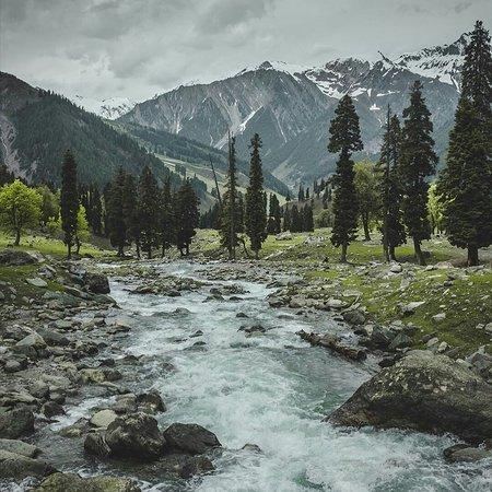 喀什米爾張圖片