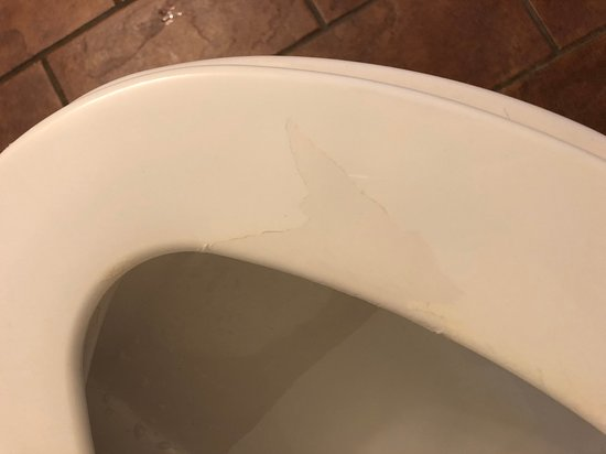New Edinburgh, Canada: Toilet seat with peeling paint - not very hygienic!