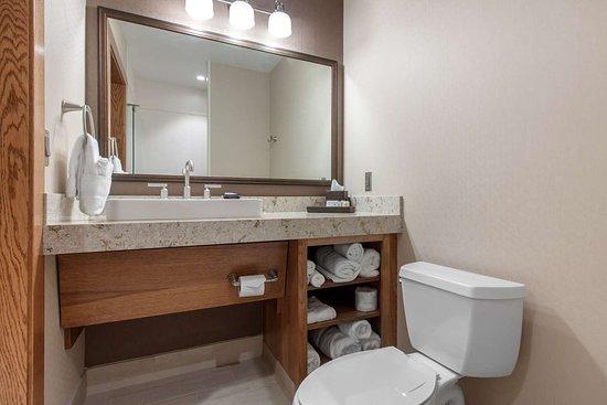 Norfolk Lodge & Suites Ascend Collection: Bathroom in guest room