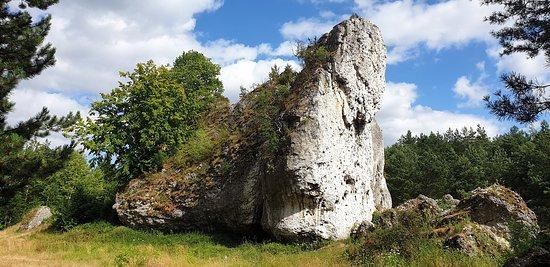 Zarki, โปแลนด์: Miejsce na piknik pod wiszącą skałą