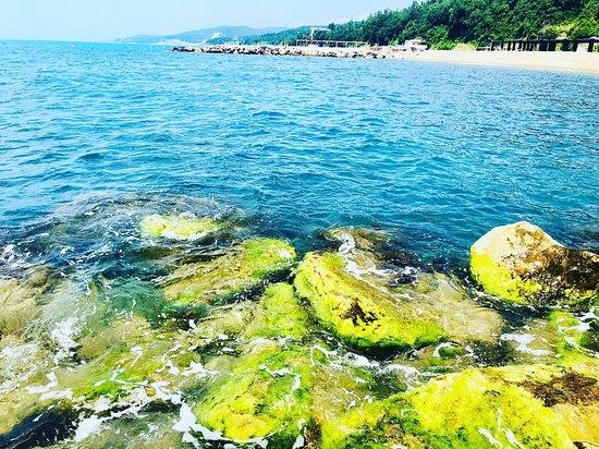 Lermontovo, Russia: Море