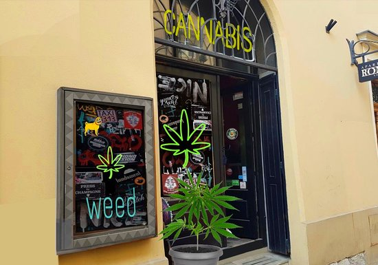 Mops Coffeeshop - Cannabis Store