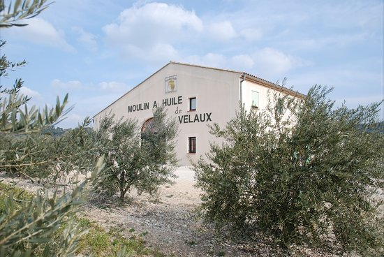 Boutique Moulin Huile de Velaux Cooperative Oléicole de Velaux