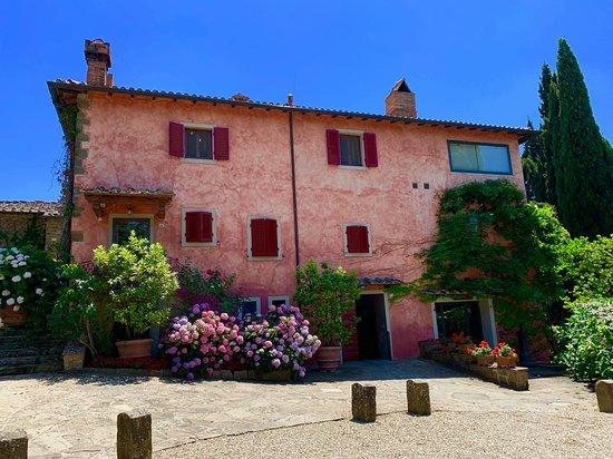 Private Half-Day Wine and Food in Chianti Classico from Florence: Second winery, Cennatoio