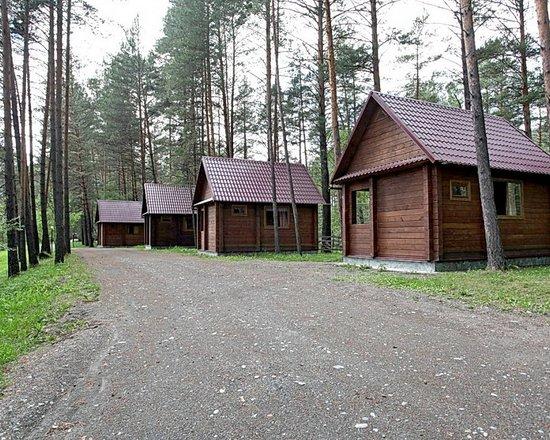 Ust-Sema, Rosja: Благоустроенные,отдельностоящий,кедровые дома.Оснащены: двуспальная и односпальная кровать,туалет,душ,холодильник,телевизор
