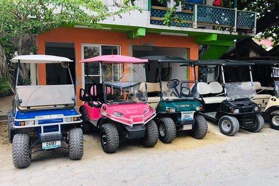 Island Bee Golf Cart Rentals