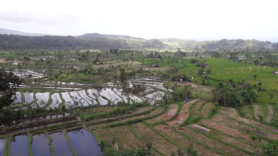 Tirta gangga water garden lets go to the eastern part of Bali. its will show you a beauty nature,lush green and magnificant rice field too.