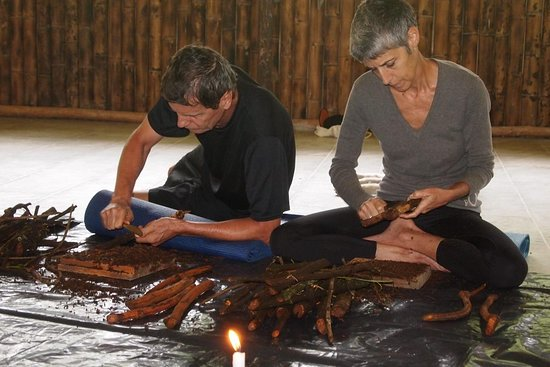 Ayahuasca retreats with an indigenous shaman
